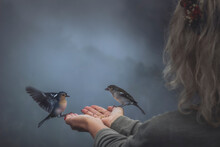 Girl Feeding Birds From Hands During Foggy Day