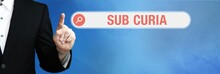 Sub Curia. Lawyer (man) Points With His Finger To An Internet Browser. Text Is In The Search Box. Blue Background.