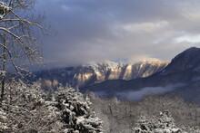 Vista Del Monte Generoso (Svizzera) Con Neve E Nuvole Ed Alberi Innveati