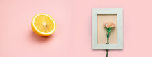 Orange Pink Carnation Flower In White Wood Frame With Sliced Of Yellow Lemon Nature Food Banner Background