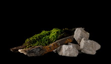 Green Moss With Twigs, Tree Barks And White Rocks Isolated On Black Background, Clipping Path