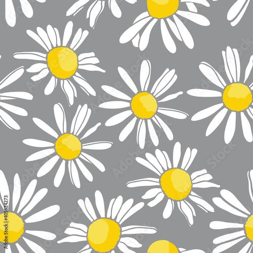 .Hand-drawn daisy flowers on a gray background. Vector seamless pattern. Trendy Tapéta, Fotótapéta
