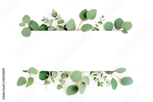Frame, border made of green leaves eucalyptus isolated on white background. flat lay, top view - fototapety na wymiar