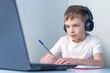 The child looks at the laptop and writes in a notebook. Online learning. Online lessons.
