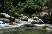 Moving Over A Tropical River With A Quick Current And Crystal Clear Water