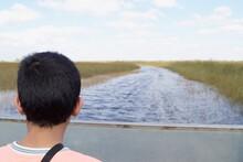 Person Looking At Marshland, Everglades National Park, Florida, USA