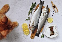 Whole Fresh Sea Bass Fish On The Chopping Board On The Light Background. Fish With Cat On The Table