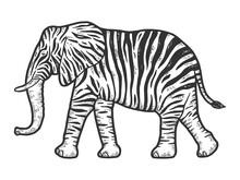 Fictional Animal Zebra Elephant. Engraving Vector Illustration.