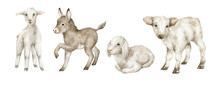 Watercolor Cute Farm Baby Animals. Goat, Cow, Sheep, Donkey. Young Domestic Animal, Easter Babies.