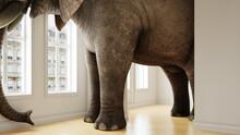 Großer Elefant Im Raum Als Platzproblem Konzept