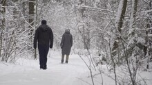 A Guy And A Girl In Practical Gray Clothes, Walking Through A Snow-covered Forest In A Snowfall. Its Snowing, Its Winter, Theyre Fooling Around And Laughing. Enjoyment.