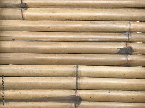 Papel de parede Full Frame Shot Of Bamboos