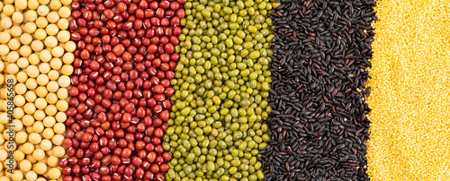 Fototapeta Top view of different grain and cereal varieties in vertical rows obraz