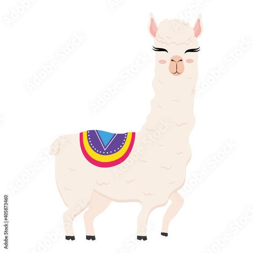 Fototapeta premium cute alpaca exotic animal with chair ethnicity vector illustration design