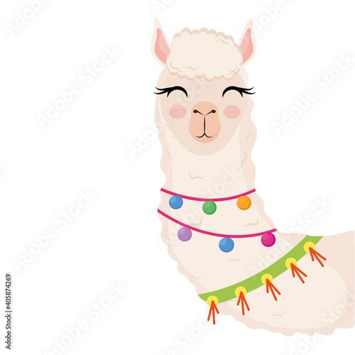 Fototapeta premium cute alpaca exotic animal with necklaces character vector illustration design