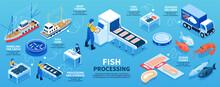 Fish Processing Isometric Infographics Scheme