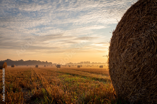 Fotografie, Obraz Hay Bales On Field Against Sky During Sunset