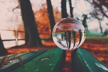 Close-up Of Crystal Ball On Wooden Bench During Autumn