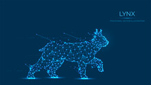Abstract Polygonal Lynx Made Of Lines And Dots Isolated On Blue Background. Low Poly Vector Illustration Of A Wild Cat
