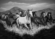 Art  Black And White  Painting Fine Art Oil Color Running Horse Lucky From Thailand