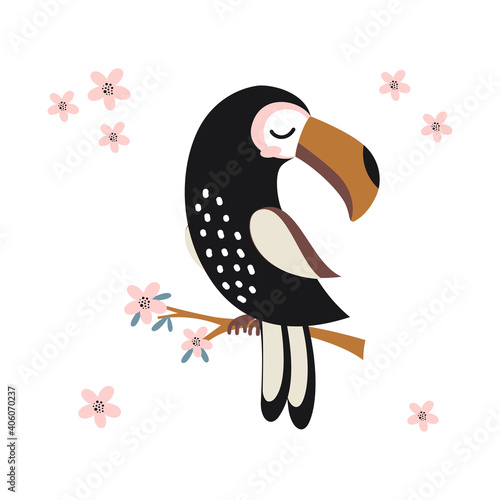 Fototapeta premium funny toucan on white background, cute animals