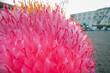 Leinwandbild Motiv Close-up Of Pink Flowering Plant