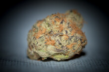 Close Up Detail Of High Grade Canadian Marijuana Bud