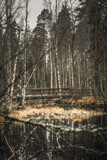 Amazing shot of a wooden bridge crossing a little lake in the forest - perfect for wallpap