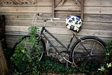 Old Bicycle In The Garden
