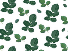 Rose Leaves With Thorns Seamless Pattern Vector