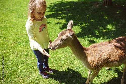 Fototapeta premium High Angle View Of Girl Gesturing By Deer