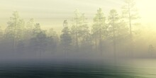 River In The Morning In The Fog, Lake In The Haze, Forest Over The Water In The Sun, Trees In The Fog Over The Water, 3D Rendering