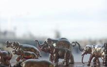 Close-up Of Elephant Figurines