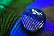 Leinwandbild Motiv Close-up Of Water Drop On Peacock Feather