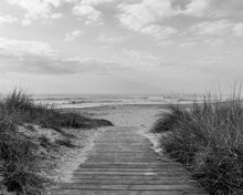Grayscale Shot Of A Wooden Path To The Sandy Beach