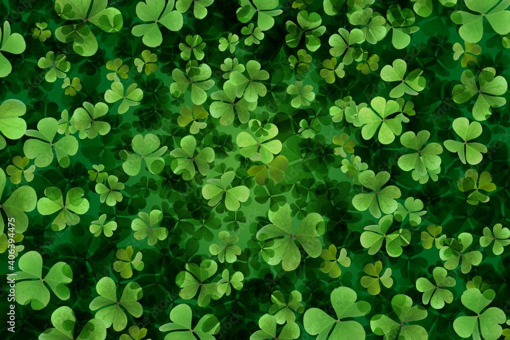 Fototapeta Fresh green clover leaves as background. St. Patrick's Day