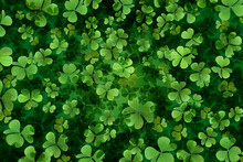 Fresh Green Clover Leaves As Background. St. Patrick's Day
