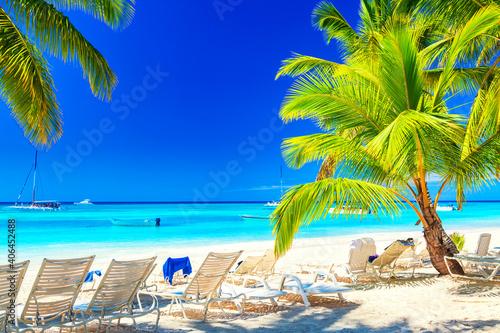 Tela Palm beach on tropical idyllic paradise Island
