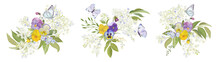 Watercolor Pansy Flowers Bouquet Collection. Vector Viola Spring Floral Set, Butterfly Illustration