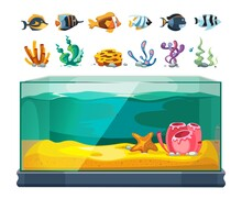 Aquarium Bundle. Exotic Fishes, Seaweeds And Corals. Cartoon Glass Water Cube, Isolated Sealife Or Underwater Vector Element. Coral And Seaweed, Aquarium Underwater Illustration
