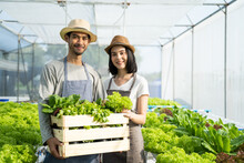Couple Of Young Farm Owner Carrying Box Of Vegetables In Greenhouse.