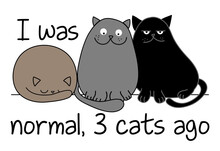 I Was Normal 3 Cats Ago - Funny Quote Design With Three Different Cats. Kitten Calligraphy Sign For Print. Cute Cat Poster With Lettering, Good For T Shirts, Gifts, Mugs Or Other Pritable Designs For.