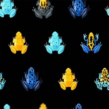 Vector Seamless Pattern With Vivid Tropical Frogs