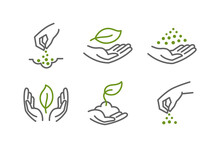 Set Of Icons. Growing Seedlings Plant Shoots In Hand. Sowing Seeds. Environmental Protection. Vector Contour Green Line.