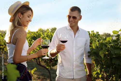 Couple with glasses of wine in vineyard on sunny day