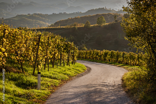 Slovenian and Austrian wine road
