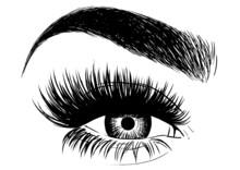 Gorgeous Eye Makeup And Brow