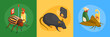 Pest Control Design Concept