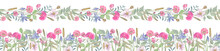 Seamless Border And Garland Of Wild Flowers On White Isolated Background. Elegant Botanical Illustration; Elements Are Painted In Watercolors. Perfect For Any Decorations; Ideal For Farmhouse Style.