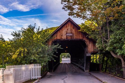 Cuadros en Lienzo VT-WOODSTOCK-MIDDLE BRIDGE